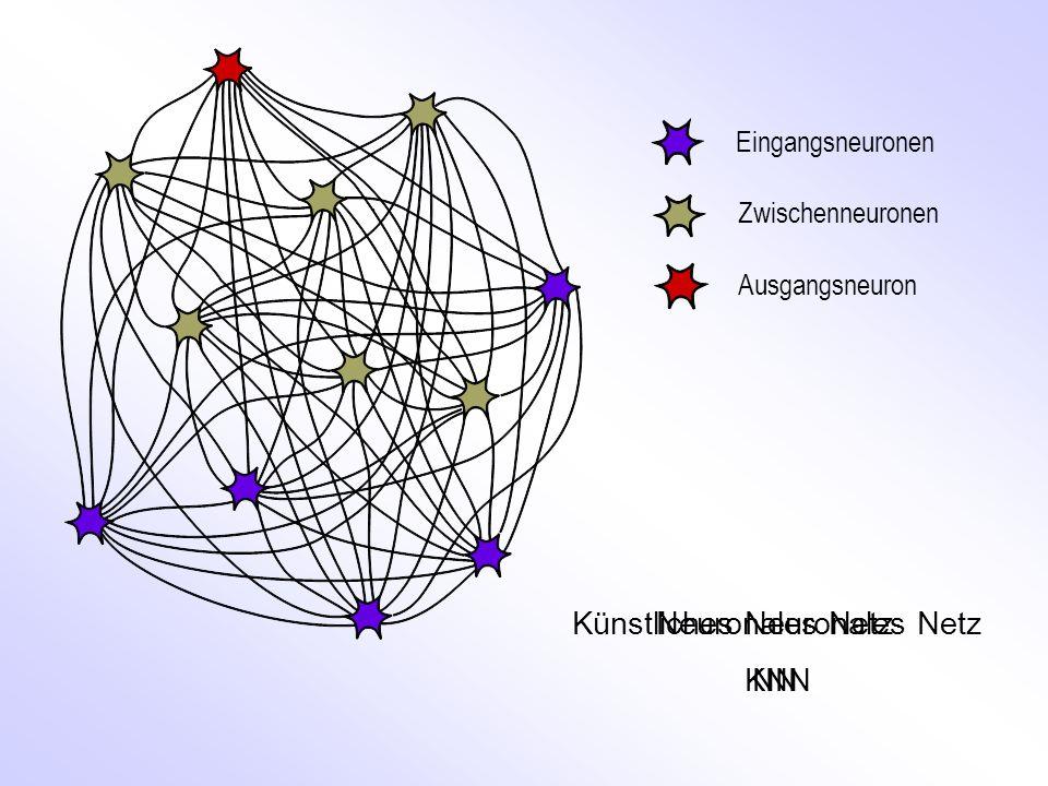 Eingangsneuronen Zwischenneuronen Ausgangsneuron Künstliches Neuronales Netz KNN Neuronales Netz NN