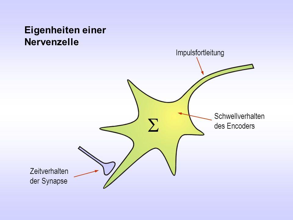 Soma Encoder Axon Dendrit PSP PSP > 50mV Arbeitsweise einer (biologischen) Nervenzelle
