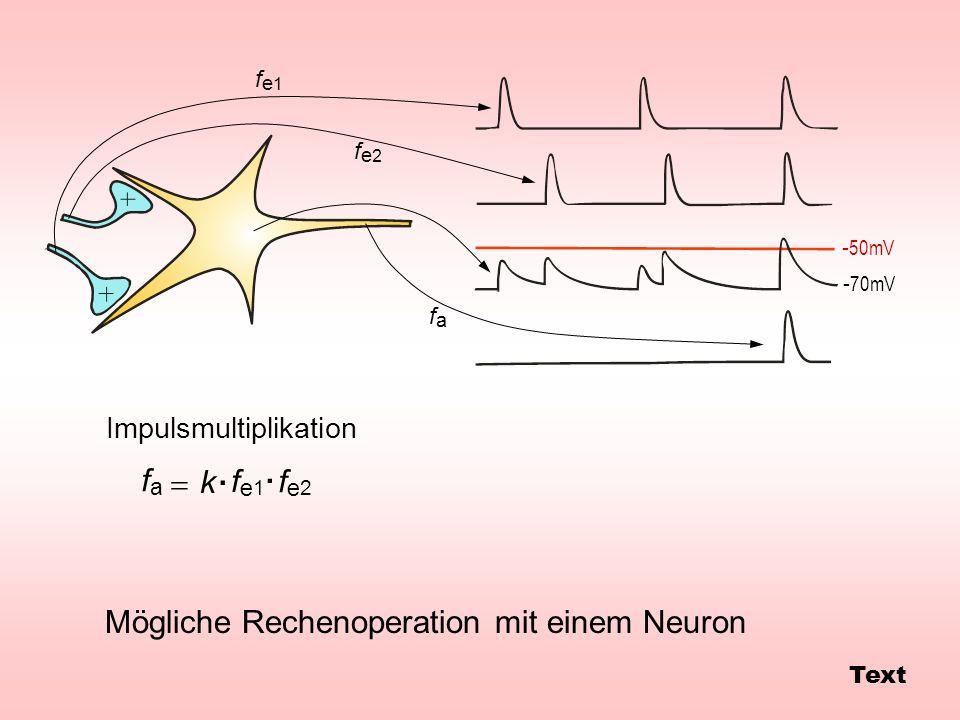 Mögliche Rechenoperation mit einem Neuron Impulsmultiplikation - 50mV - 70mV fe1fe1 fe2fe2 fafa fe1fe1 fe2fe2 fafa k.. Text