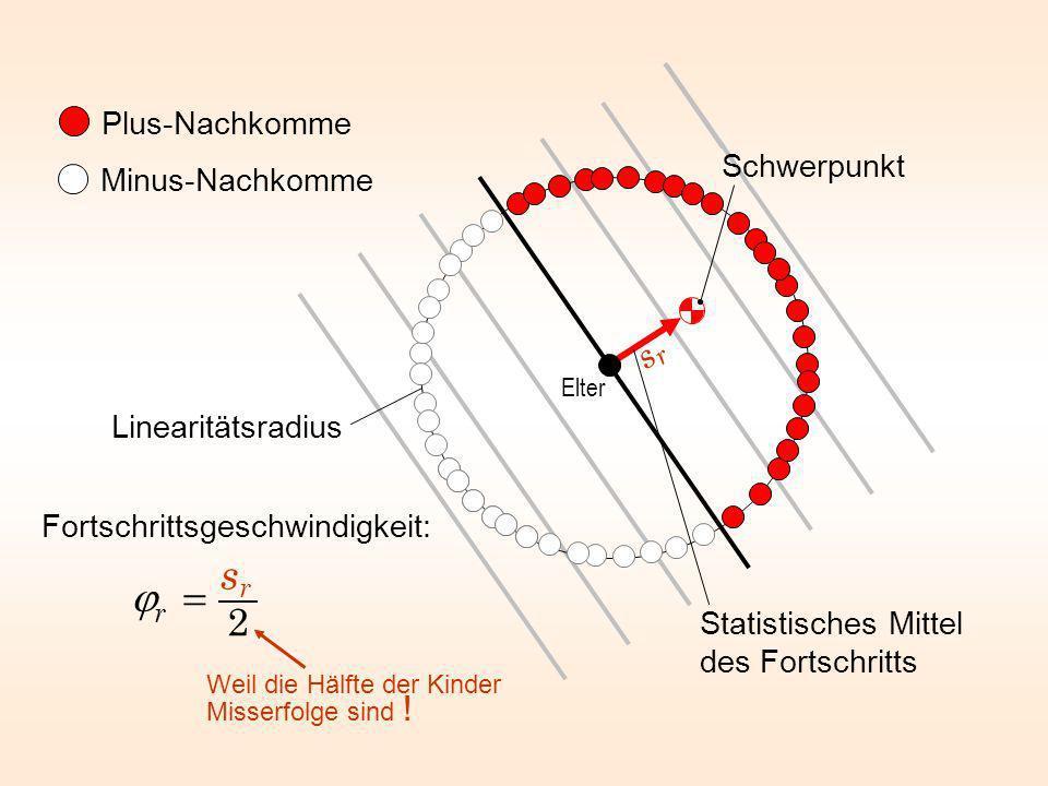 Plus-Nachkomme Minus-Nachkomme Statistisches Mittel des Fortschritts Elter Linearitätsradius Schwerpunkt Fortschrittsgeschwindigkeit: Weil die Hälfte