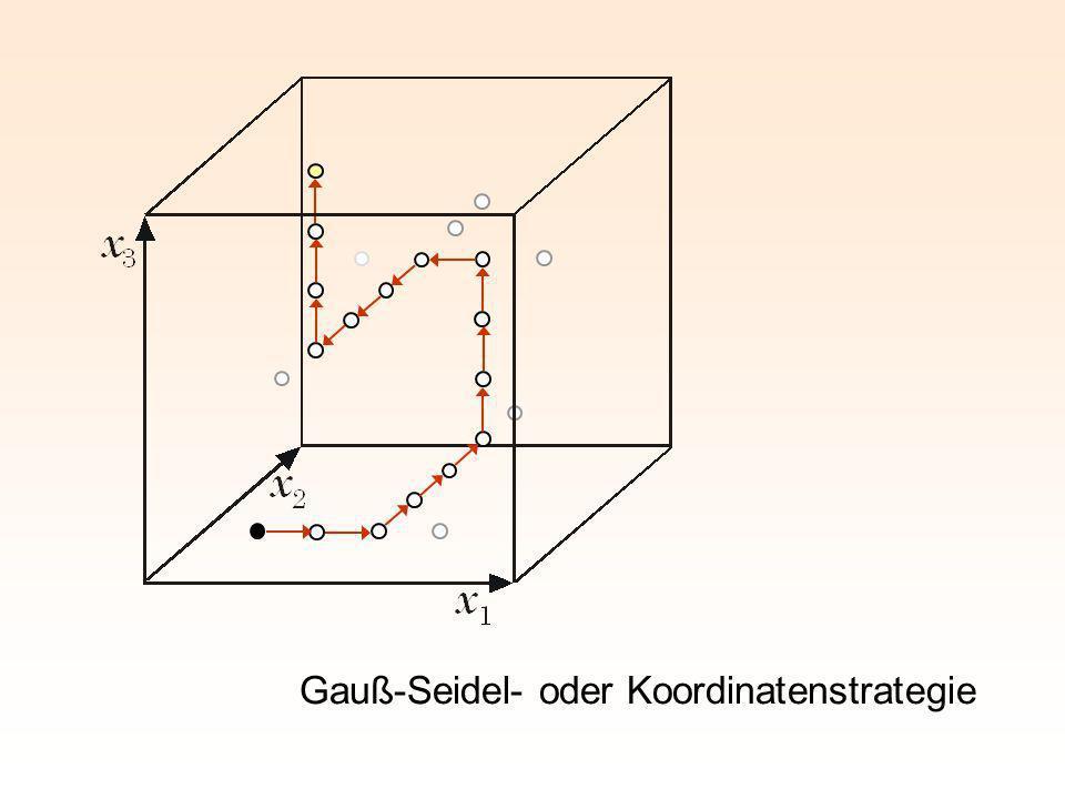 Gauß-Seidel- oder Koordinatenstrategie