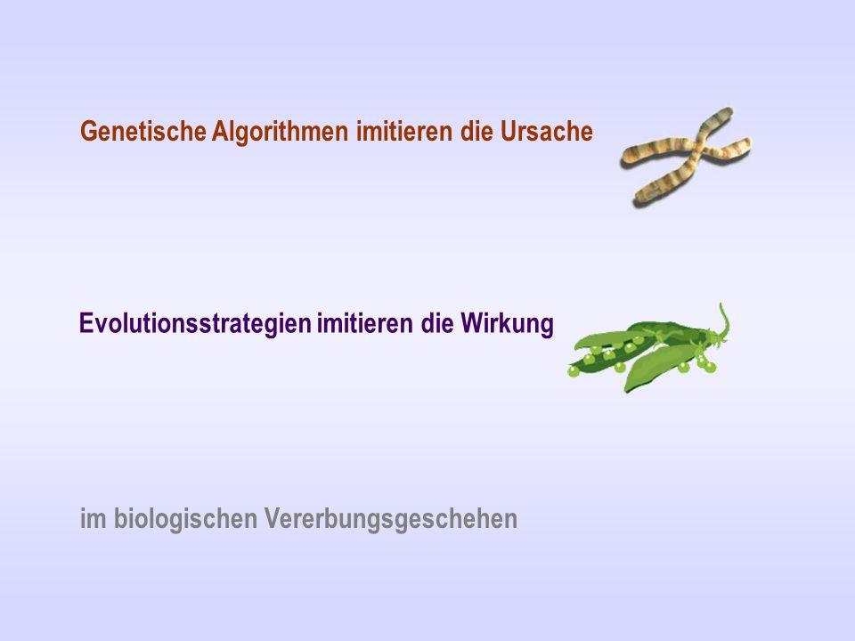 Genetische Algorithmen imitieren die Ursache Evolutionsstrategien imitieren die Wirkung im biologischen Vererbungsgeschehen