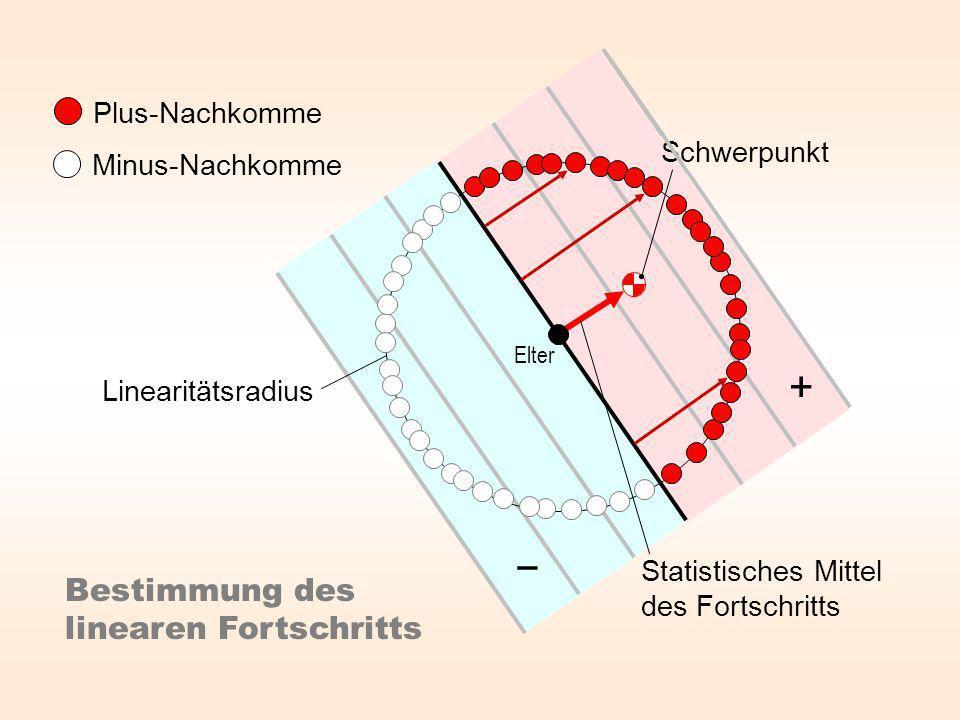 Plus-Nachkomme Minus-Nachkomme Statistisches Mittel des Fortschritts Bestimmung des linearen Fortschritts Elter Linearitätsradius Schwerpunkt +