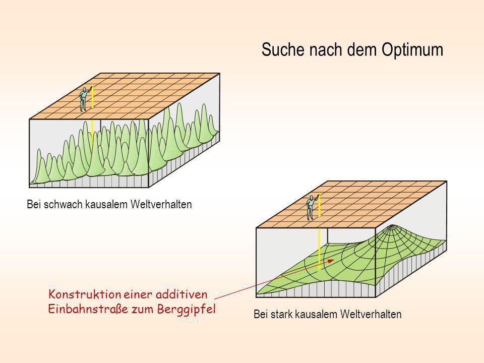 Suche nach dem Optimum Bei schwach kausalem Weltverhalten Bei stark kausalem Weltverhalten Konstruktion einer additiven Einbahnstraße zum Berggipfel
