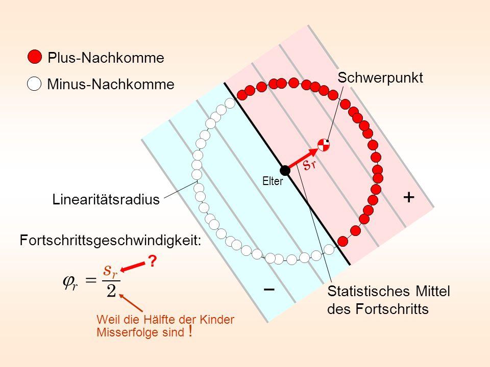 Plus-Nachkomme Minus-Nachkomme Statistisches Mittel des Fortschritts Elter Linearitätsradius Schwerpunkt + Fortschrittsgeschwindigkeit: Weil die Hälft