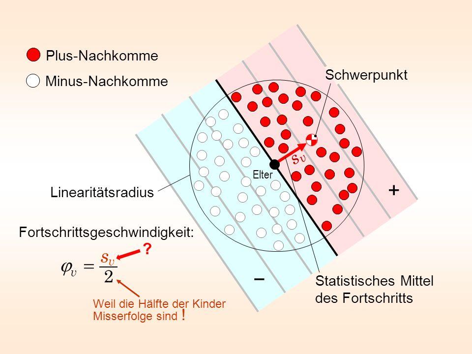 Plus-Nachkomme Minus-Nachkomme Statistisches Mittel des Fortschritts Linearitätsradius Schwerpunkt Elter + Fortschrittsgeschwindigkeit: Weil die Hälft