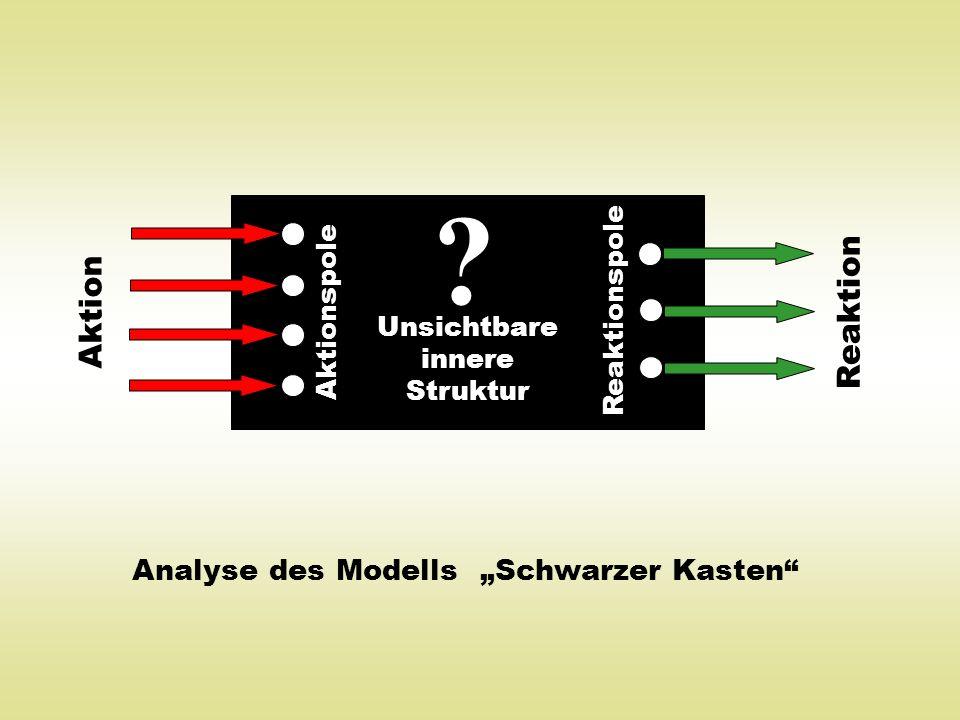 Analyse des Modells Schwarzer Kasten ? Aktionspole Reaktionspole Aktion Reaktion Unsichtbare innere Struktur