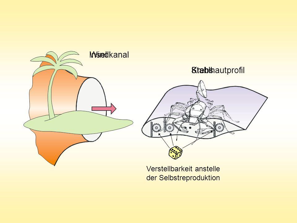 InselWindkanal KrebsStahlhautprofil Verstellbarkeit anstelle der Selbstreproduktion