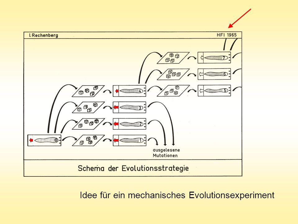 Idee für ein mechanisches Evolutionsexperiment
