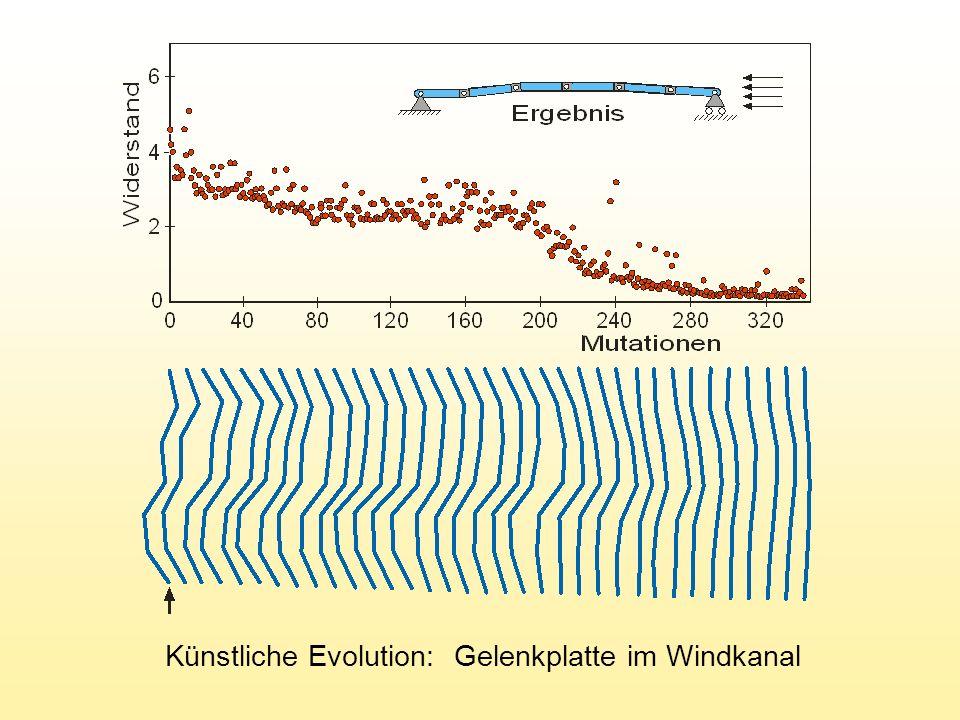 Künstliche Evolution: Gelenkplatte im Windkanal