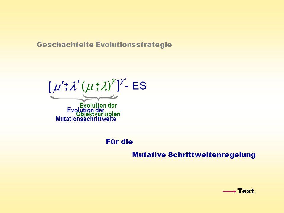 ( ) - ES +, Geschachtelte Evolutionsstrategie +, [ ] Evolution der Objektvariablen Evolution der Mutationsschrittweite Für die Mutative Schrittweitenr