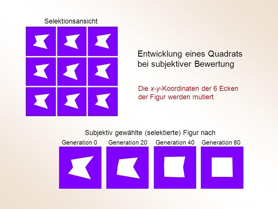 Selektionsansicht Subjektiv gewählte (selektierte) Figur nach Generation 0 Generation 20 Generation 40Generation 80 Entwicklung eines Quadrats bei subjektiver Bewertung Die x-y-Koordinaten der 6 Ecken der Figur werden mutiert