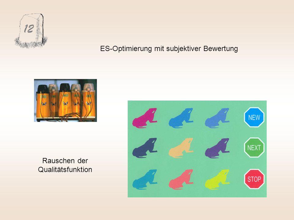 12 ES-Optimierung mit subjektiver Bewertung Rauschen der Qualitätsfunktion