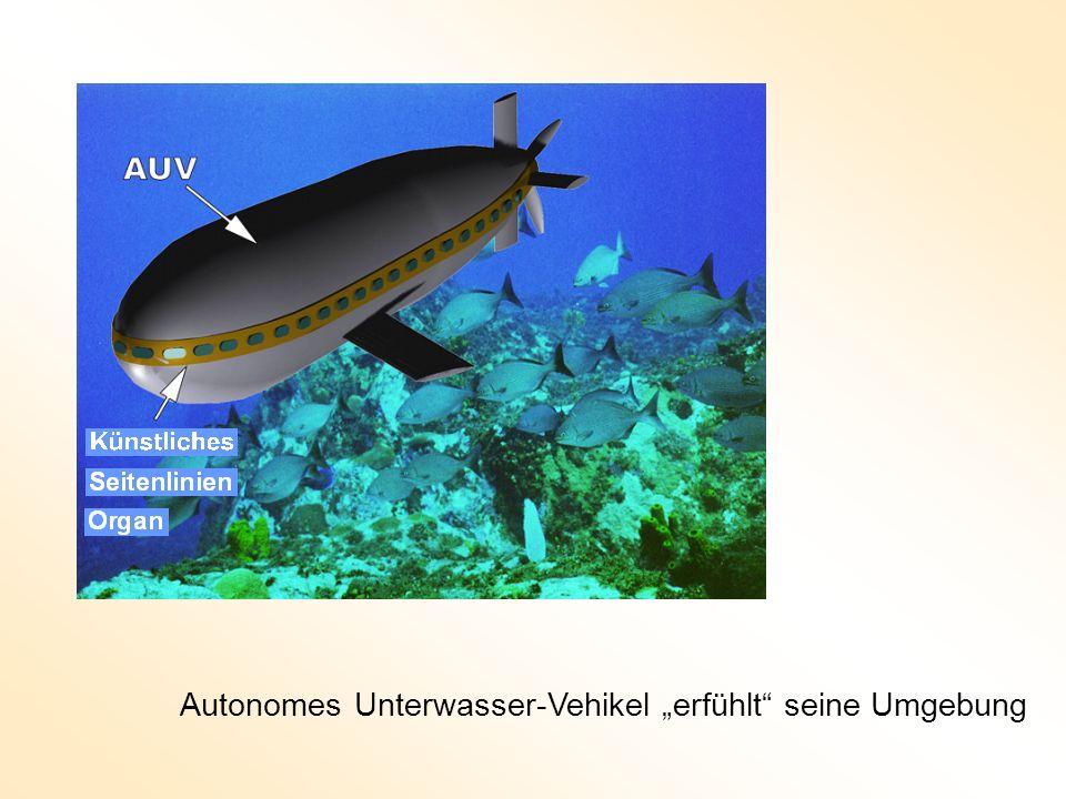 Autonomes Unterwasser-Vehikel erfühlt seine Umgebung