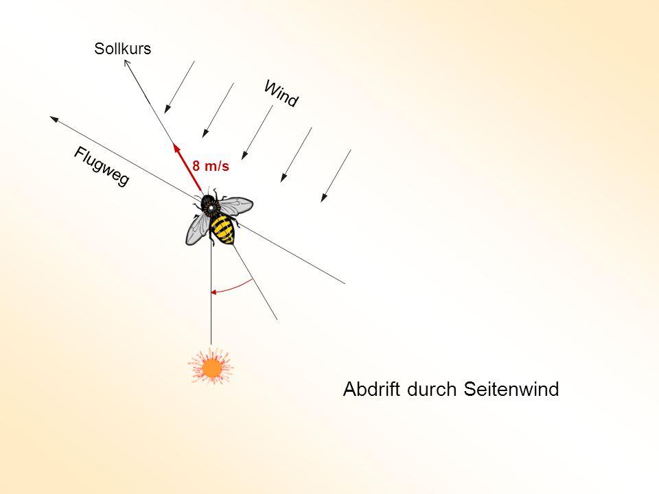 Wind Flugweg Abdrift durch Seitenwind 8 m/s Sollkurs