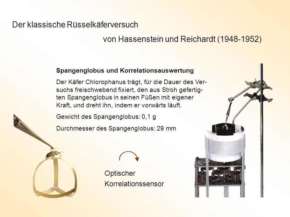Der klassische Rüsselkäferversuch von Hassenstein und Reichardt (1948-1952) Spangenglobus und Korrelationsauswertung Der Käfer Chlorophanus trägt, für