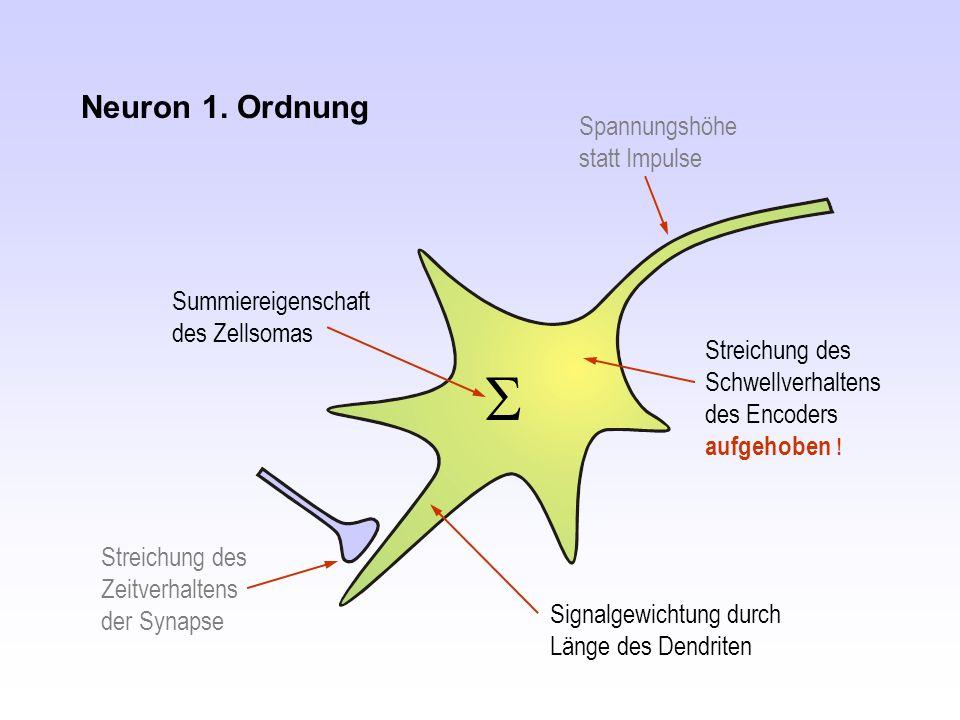 Neuron 1. Ordnung Spannungshöhe statt Impulse Streichung des Zeitverhaltens der Synapse Streichung des Schwellverhaltens des Encoders aufgehoben ! Sig