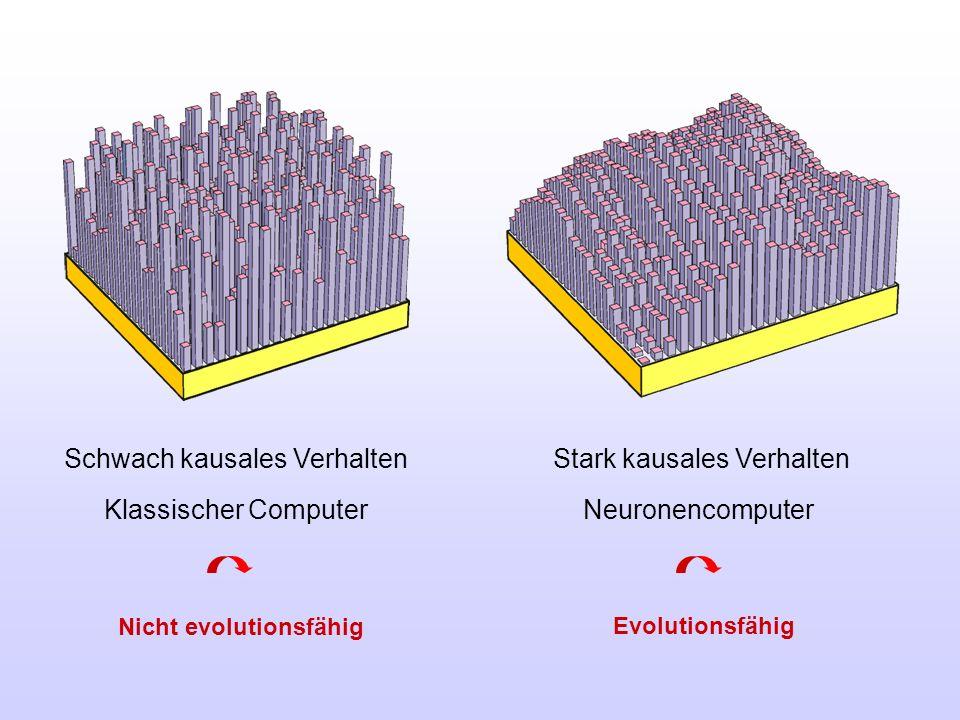 Schwach kausales Verhalten Stark kausales Verhalten Klassischer Computer Neuronencomputer Nicht evolutionsfähig Evolutionsfähig
