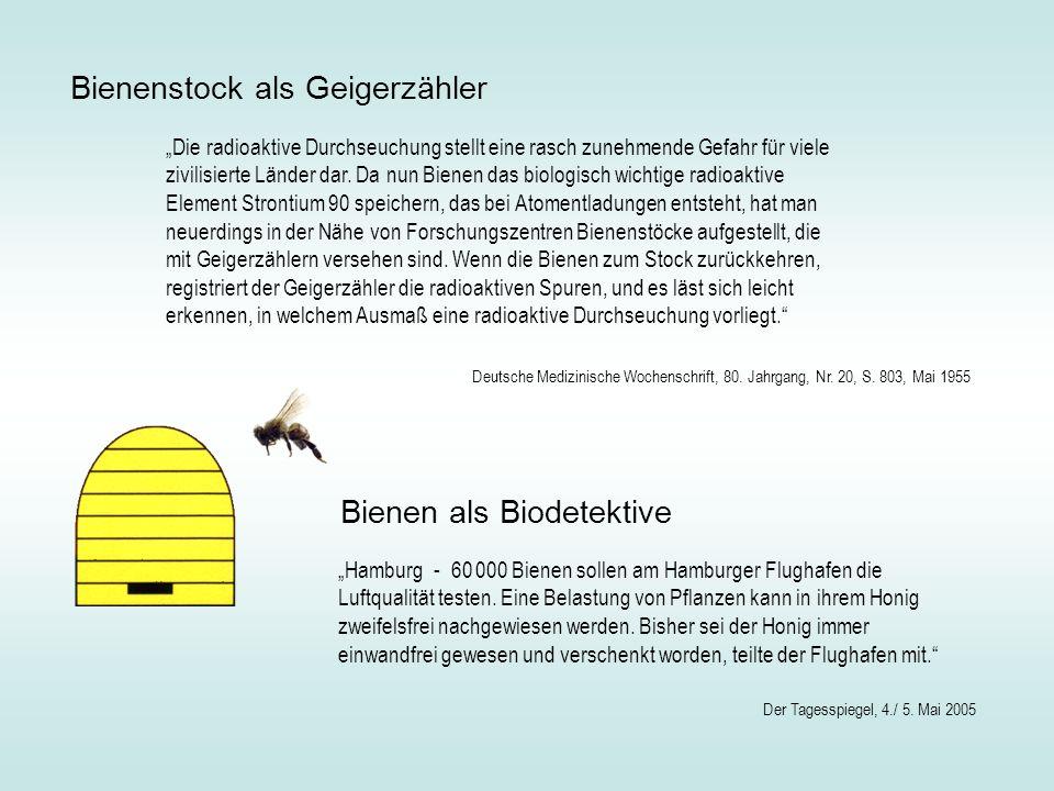 Bienenstock als Geigerzähler Die radioaktive Durchseuchung stellt eine rasch zunehmende Gefahr für viele zivilisierte Länder dar. Da nun Bienen das bi