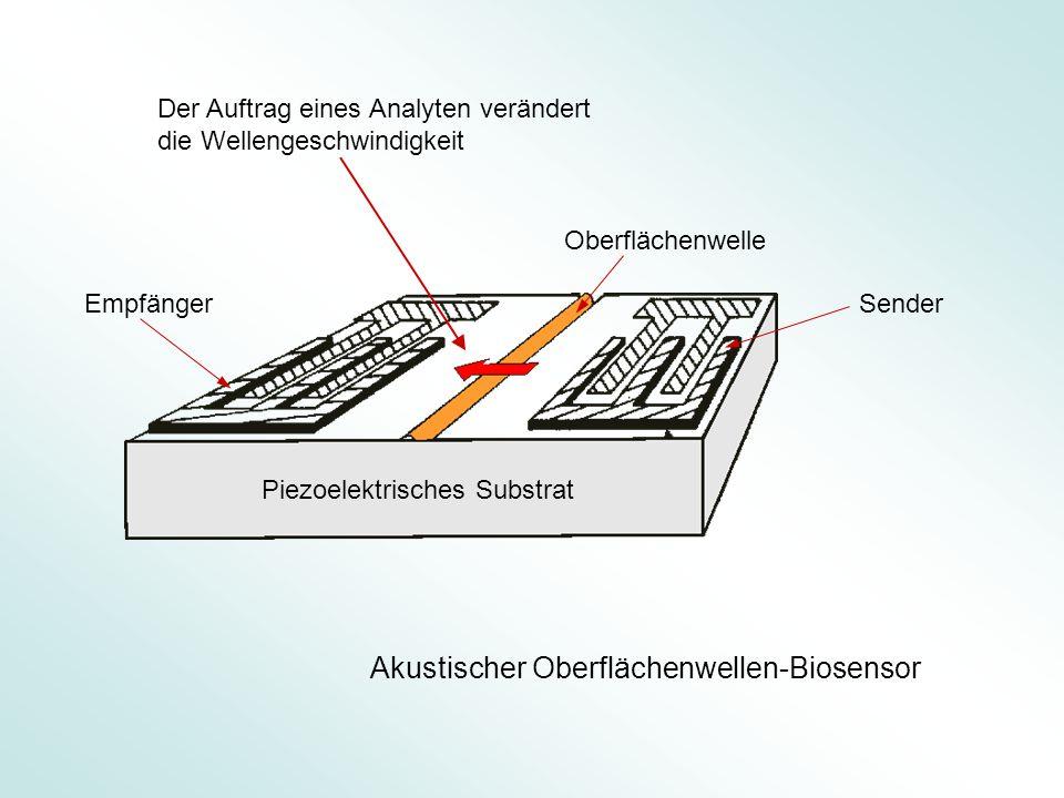 Piezoelektrisches Substrat Oberflächenwelle Sender Empfänger Akustischer Oberflächenwellen-Biosensor Der Auftrag eines Analyten verändert die Wellenge