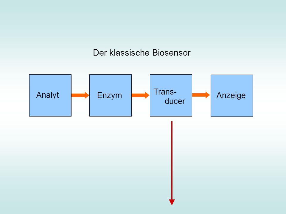 Mechanisches Katalysatormodell
