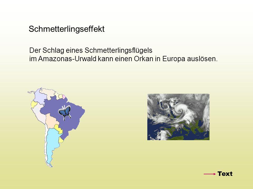 Schmetterlingseffekt Der Schlag eines Schmetterlingsflügels im Amazonas-Urwald kann einen Orkan in Europa auslösen. Text