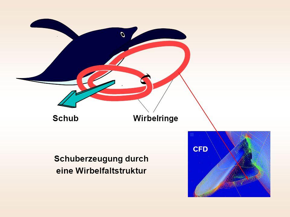 Schuberzeugung durch eine Wirbelfaltstruktur Schub Wirbelringe CFD