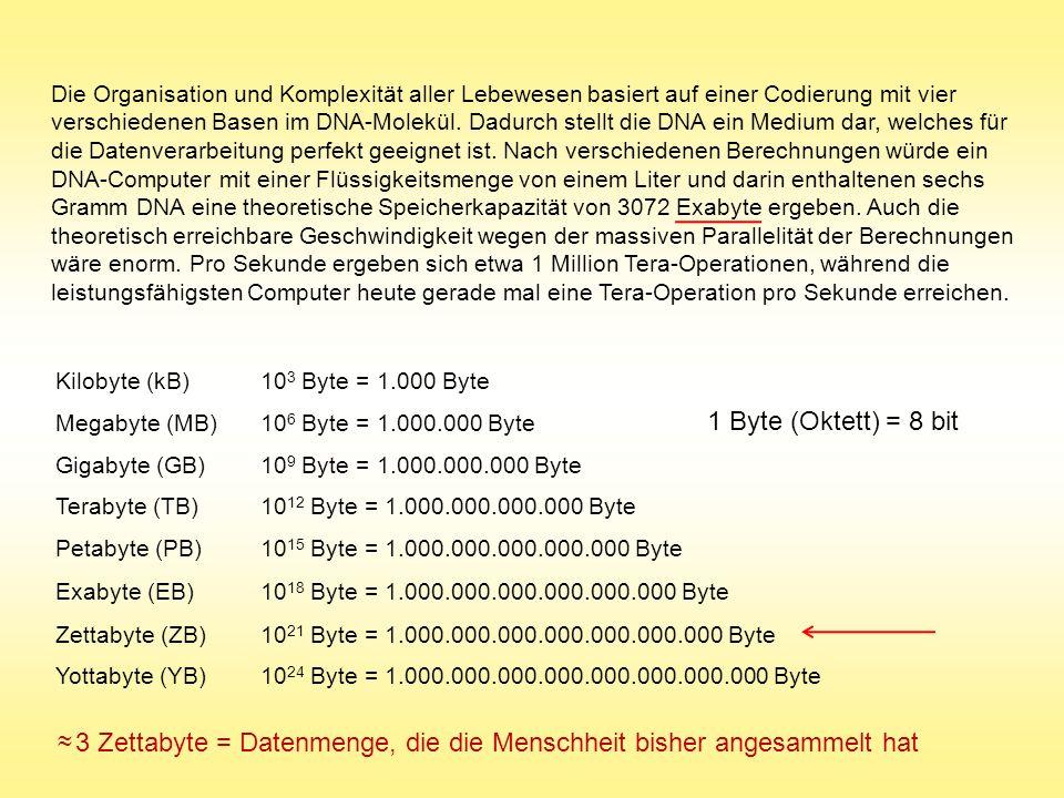 Kilobyte (kB)10 3 Byte = 1.000 Byte Megabyte (MB)10 6 Byte = 1.000.000 Byte Gigabyte (GB)10 9 Byte = 1.000.000.000 Byte Terabyte (TB)10 12 Byte = 1.00