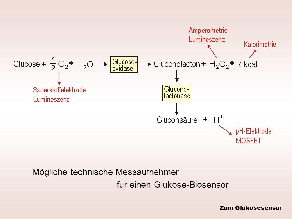 Mögliche technische Messaufnehmer für einen Glukose-Biosensor Zum Glukosesensor