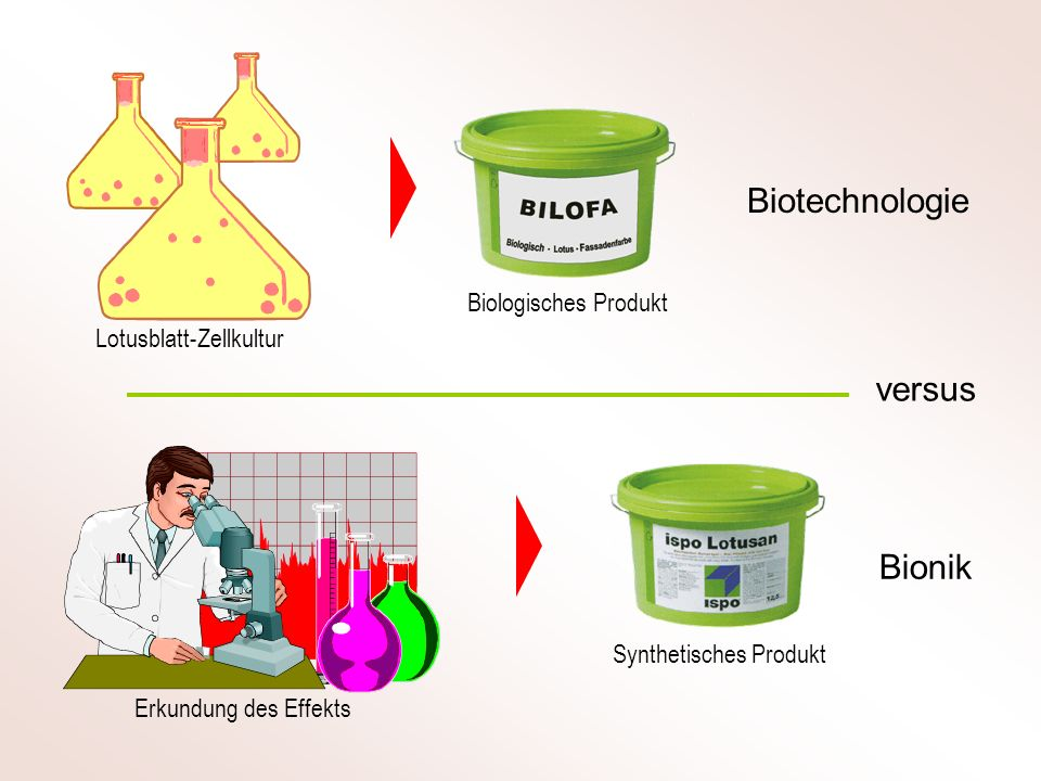 Messlösung Elektrode Elektronik Immobilisiertes Enzym Membran Reaktionsschritte in einem Glukose-Biosensor Der Glukose-Biosensor wurde bereits in den 1960er Jahren entwickelt