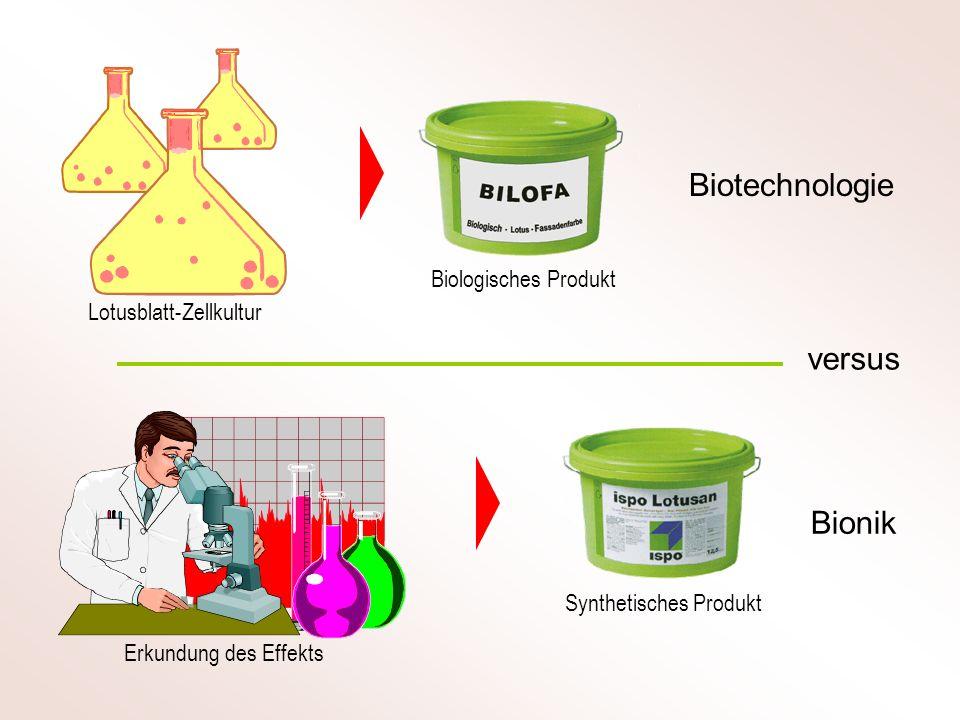 Biotechnologie Bionik versus Lotusblatt-Zellkultur Erkundung des Effekts Synthetisches Produkt Biologisches Produkt