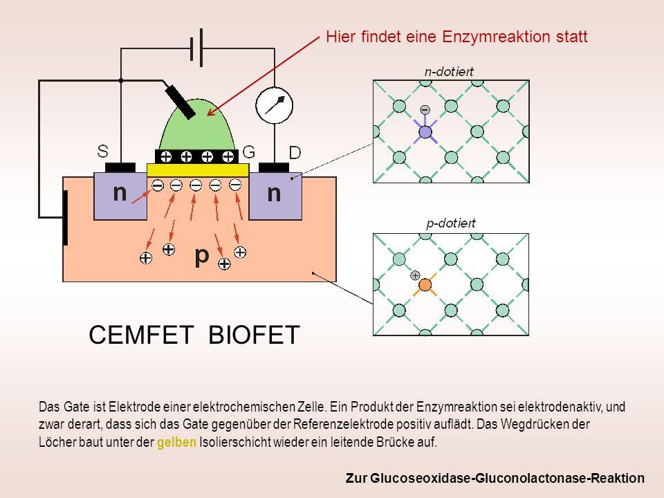 CEMFET BIOFET Das Gate ist Elektrode einer elektrochemischen Zelle. Ein Produkt der Enzymreaktion sei elektrodenaktiv, und zwar derart, dass sich das