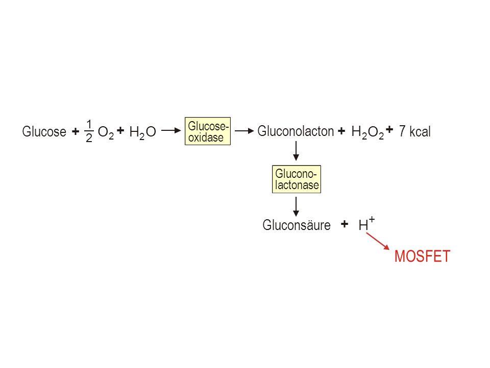 Glucose O 2 1 2 Glucose- oxidase + Gluconolacton + O 2 H 2 O H 2 + + 7 kcal Glucono- lactonase Gluconsäure H + + MOSFET