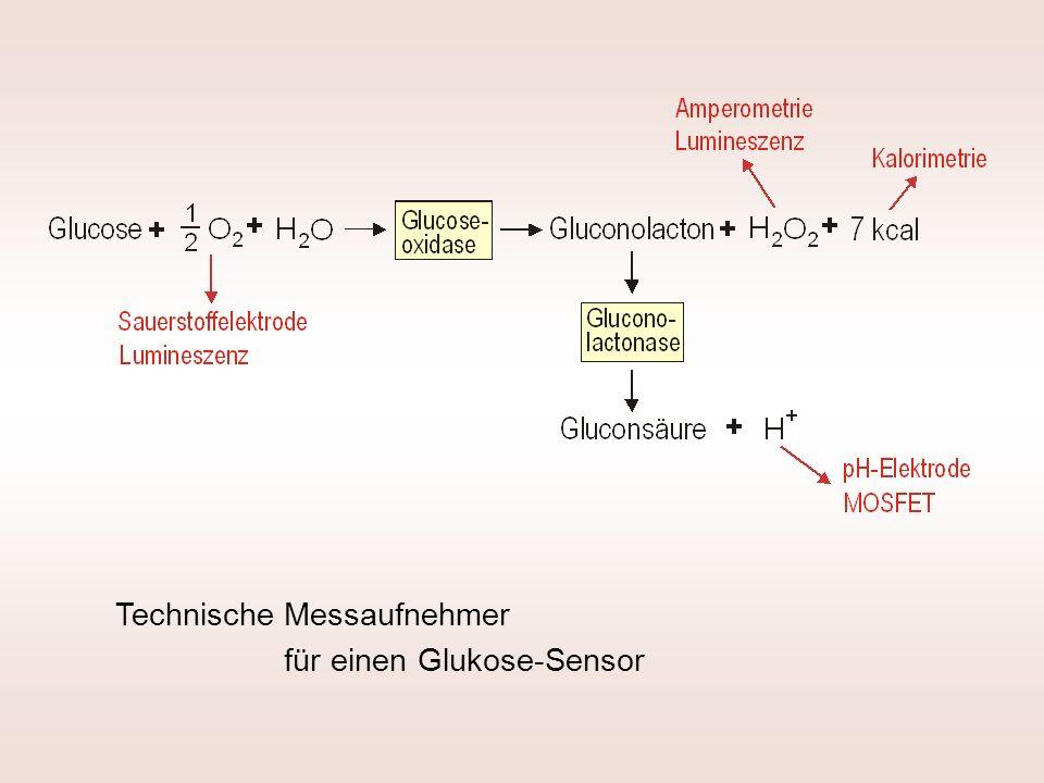 Technische Messaufnehmer für einen Glukose-Sensor
