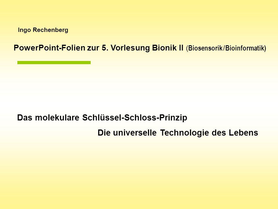 Ingo Rechenberg Das molekulare Schlüssel-Schloss-Prinzip Die universelle Technologie des Lebens PowerPoint-Folien zur 5. Vorlesung Bionik II ( Biosens