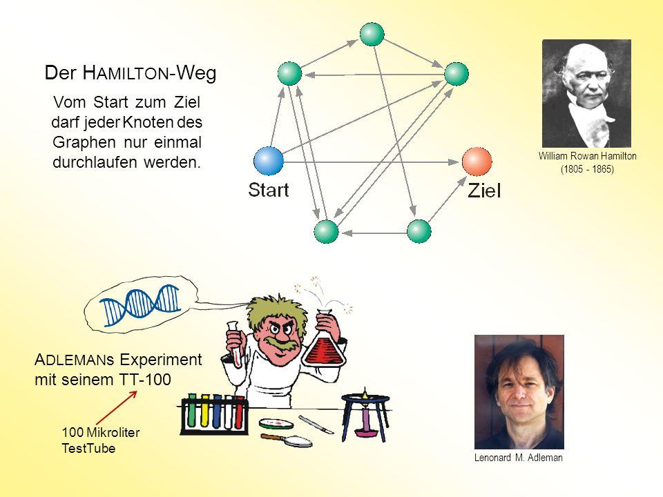 Der H AMILTON -Weg Vom Start zum Ziel darf jeder Knoten des Graphen nur einmal durchlaufen werden. A DLEMAN s Experiment mit seinem TT-100 Lenonard M.