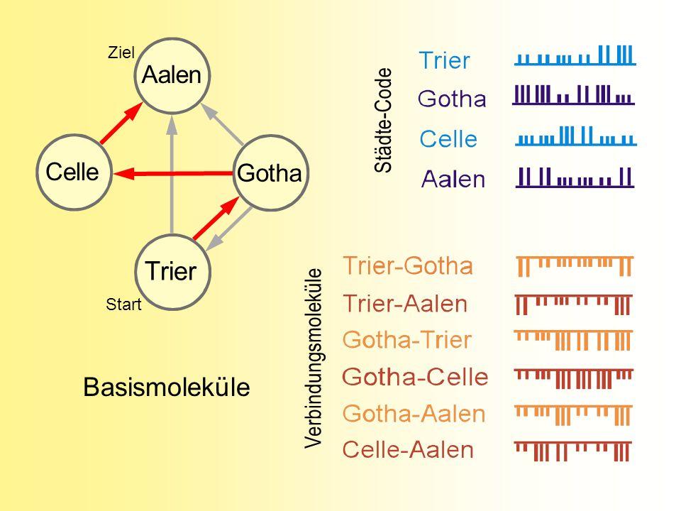 Städte-Code Verbindungsmoleküle Celle Aalen Trier Gotha Basismoleküle Ziel Start