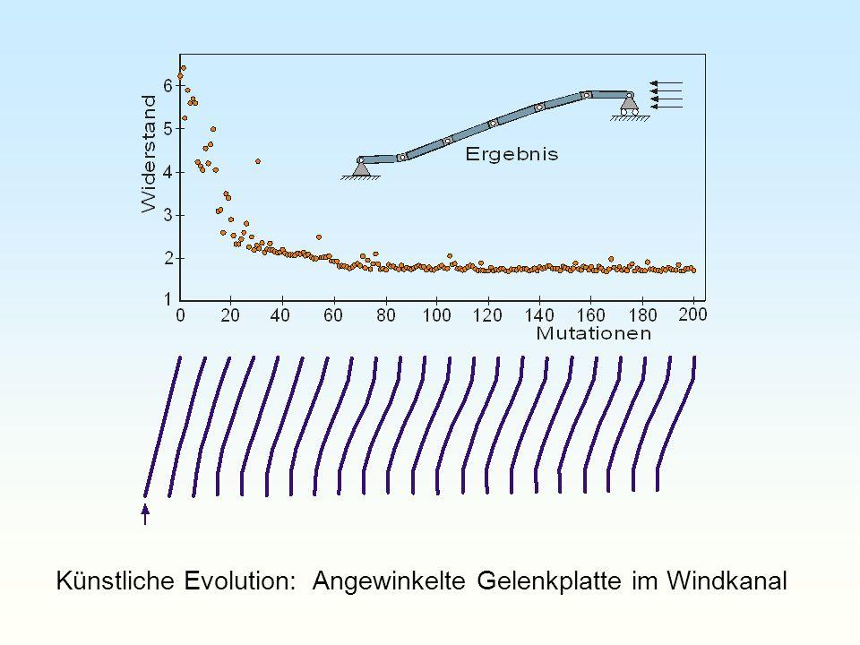 Künstliche Evolution: Angewinkelte Gelenkplatte im Windkanal