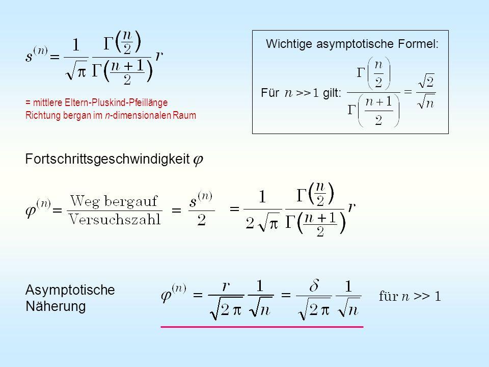 Fortschrittsgeschwindigkeit Asymptotische Näherung für n >> 1 = mittlere Eltern-Pluskind-Pfeillänge Richtung bergan im n -dimensionalen Raum Wichtige