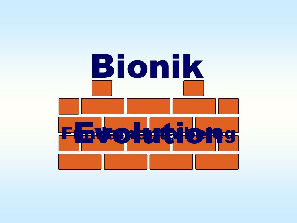 Bionik Evolution Fundamentalbeleg