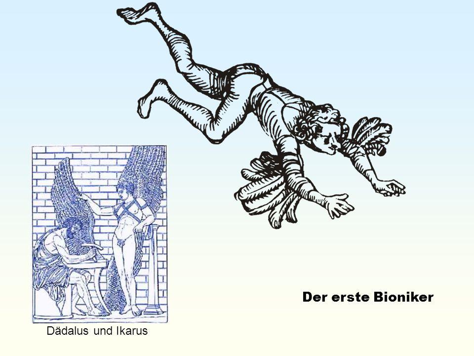 Der erste Bioniker Dädalus und Ikarus
