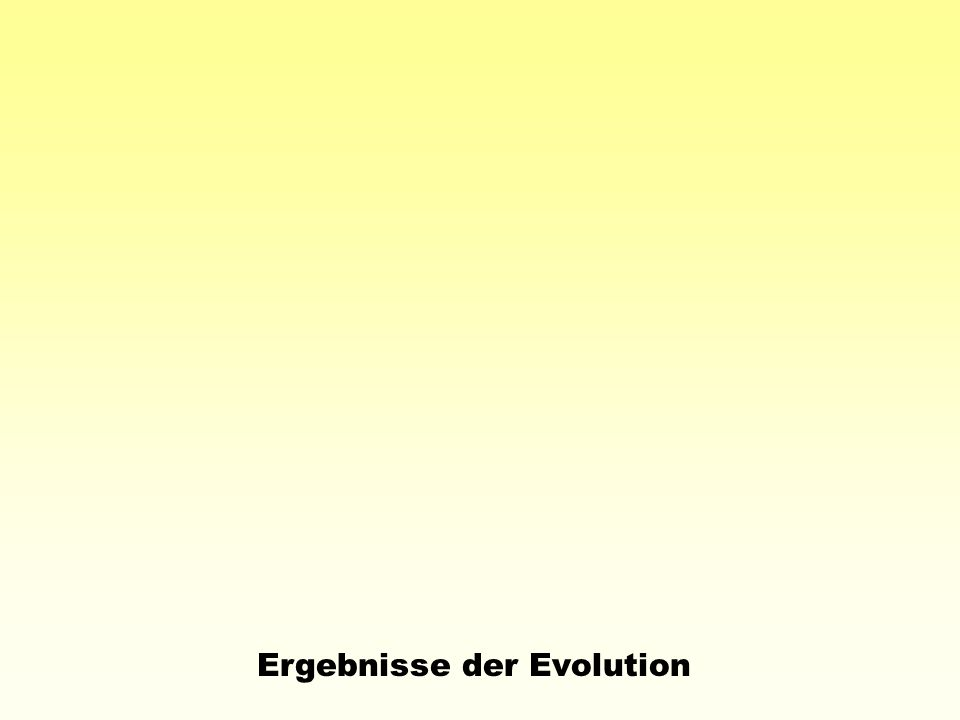 F.Ahlborn: Die Stabilität der Flugorgane (1897) A.