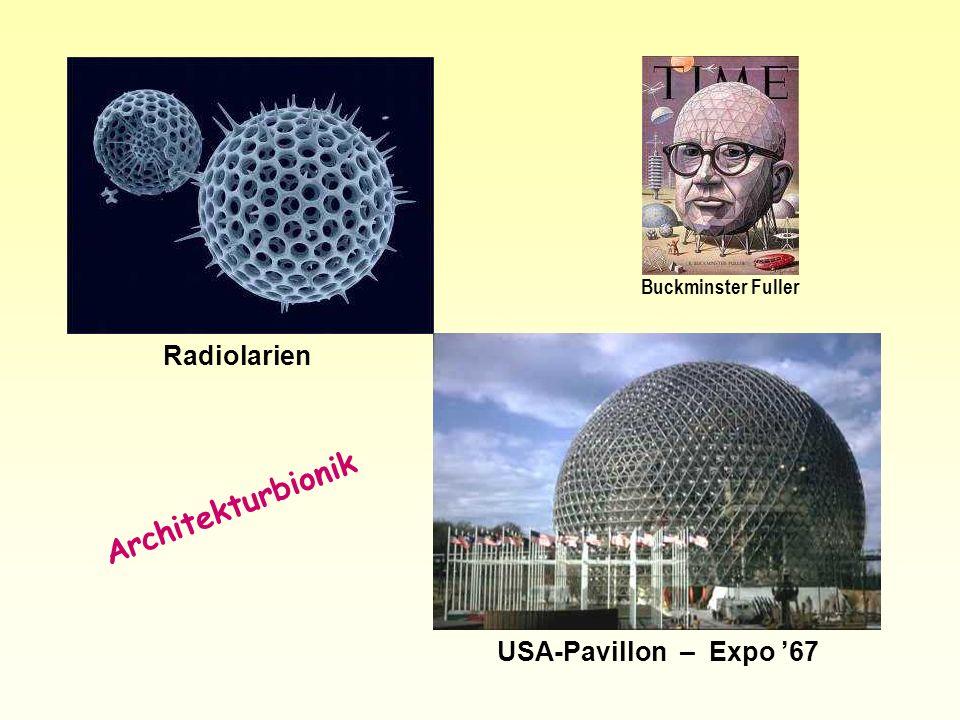 Radiolarien USA-Pavillon – Expo 67 Architekturbionik Buckminster Fuller