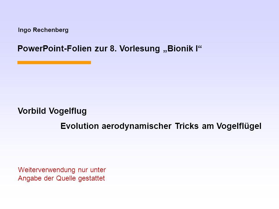 Ingo Rechenberg PowerPoint-Folien zur 8. Vorlesung Bionik I Vorbild Vogelflug Evolution aerodynamischer Tricks am Vogelflügel Weiterverwendung nur unt