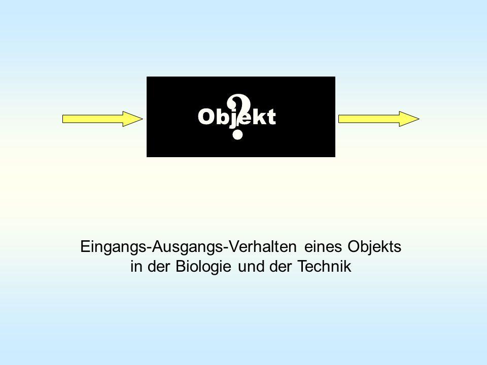 Eingangs-Ausgangs-Verhalten eines Objekts in der Biologie und der Technik Objekt ?