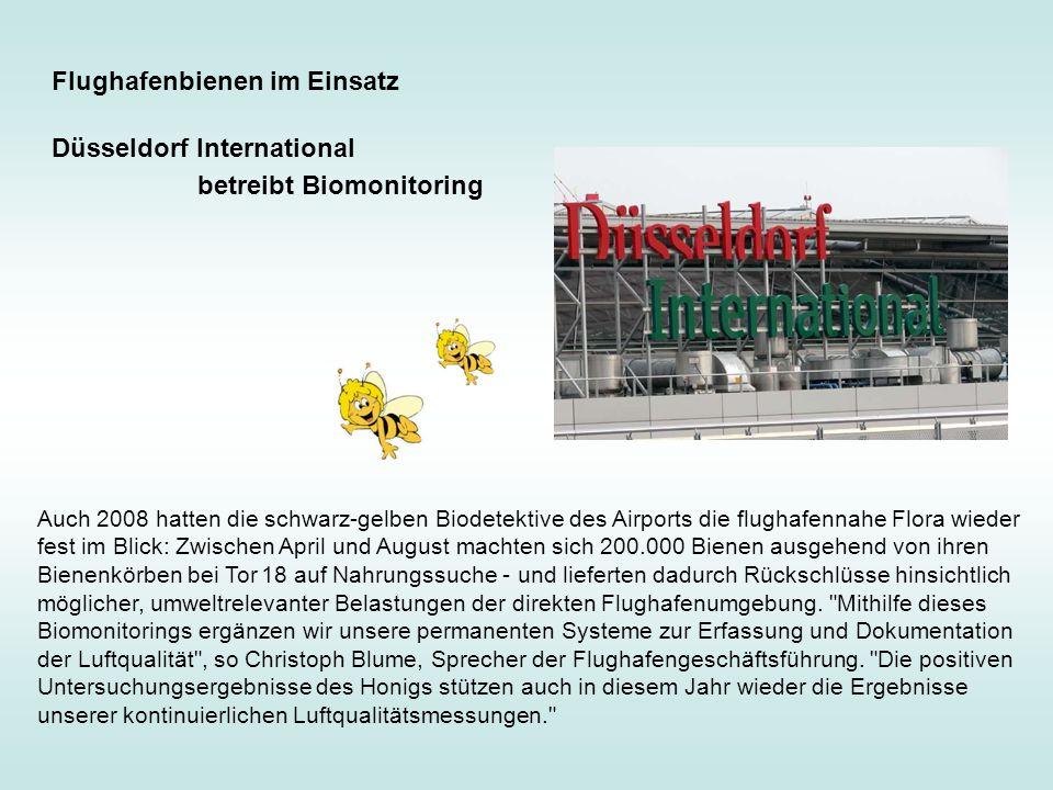 Auch 2008 hatten die schwarz-gelben Biodetektive des Airports die flughafennahe Flora wieder fest im Blick: Zwischen April und August machten sich 200