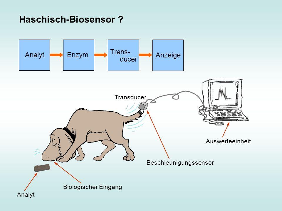 Haschisch-Biosensor ? Analyt Beschleunigungssensor Auswerteeinheit Biologischer Eingang Transducer Analyt Enzym Trans- ducer Anzeige