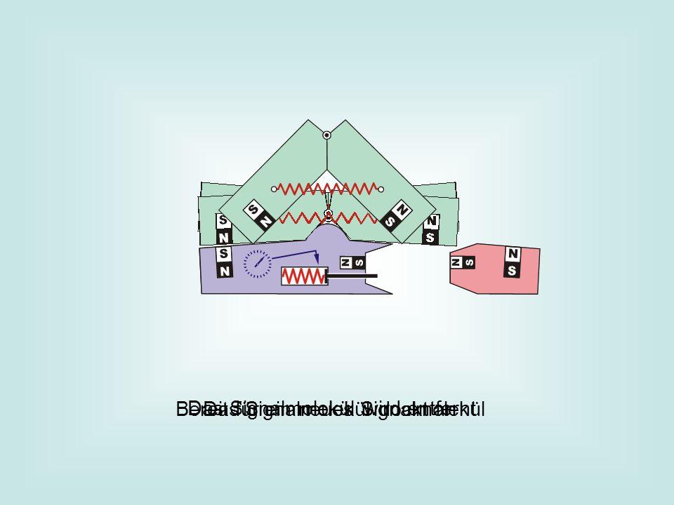 Das Signalmolekül dockt an Das Signalmolekül wird entfernt Bereit für ein neues Signalmolekül