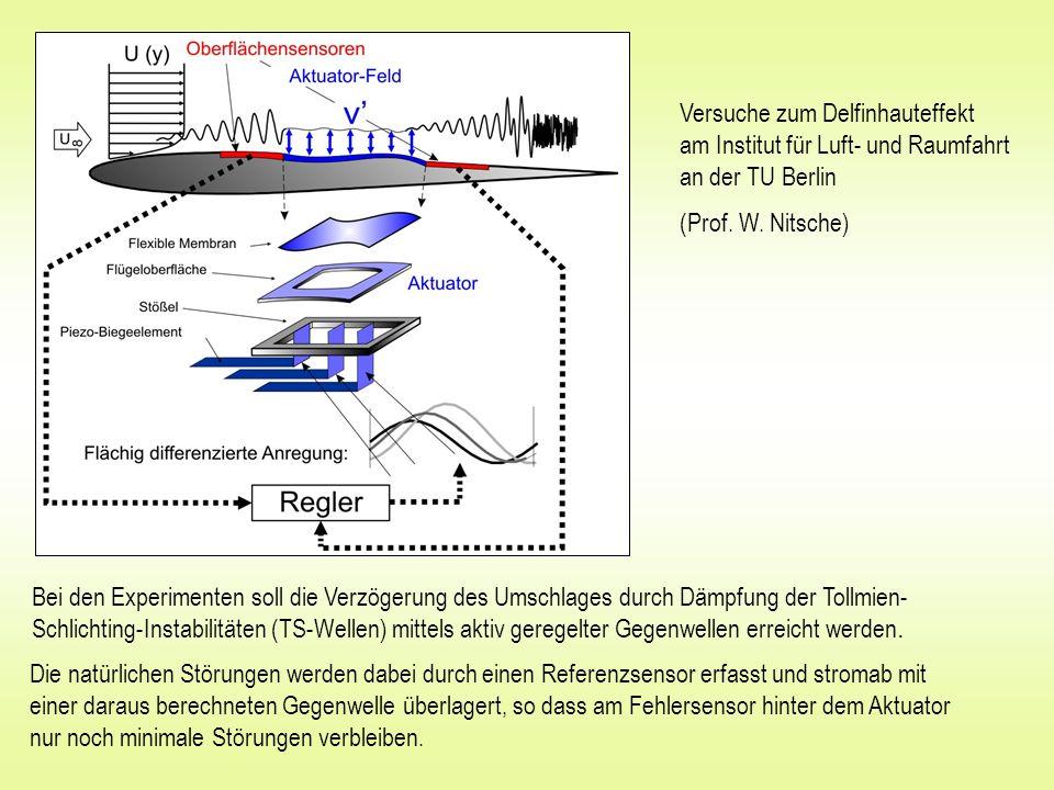 Versuche zum Delfinhauteffekt am Institut für Luft- und Raumfahrt an der TU Berlin (Prof. W. Nitsche) Bei den Experimenten soll die Verzögerung des Um