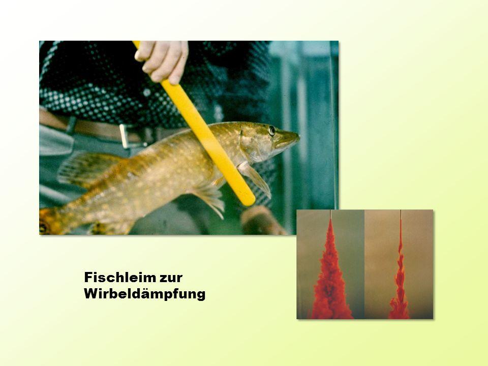 Fischleim zur Wirbeldämpfung